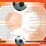 guide officiel Pro Evolution Soccer 5