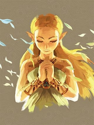 Zelda : Breath of The Wild