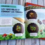 Minecraft Earth - Le guide essentiel