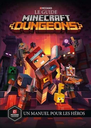 Read more about the article Minecraft Dungeons