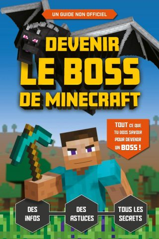 Read more about the article Minecraft