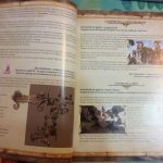 guide officiel Two Worlds 2